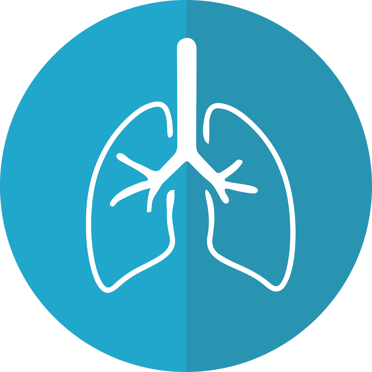 bronchitis vs pneumonia lungs icon