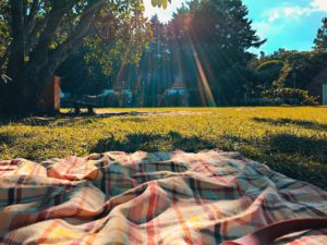 picnic blanket - stay safe during COVID-19